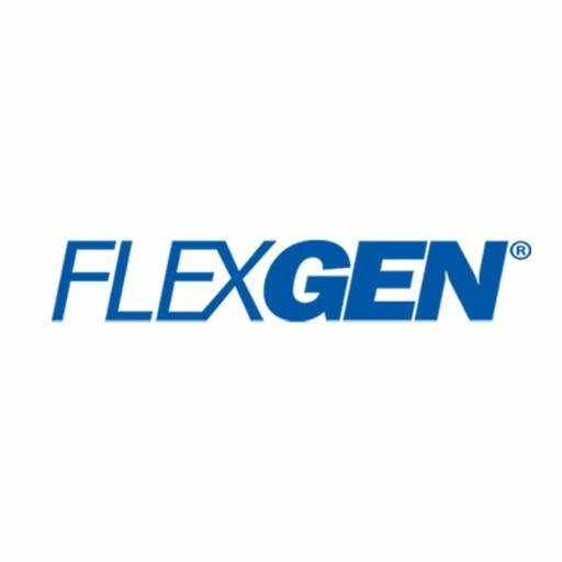 FlexGen Power