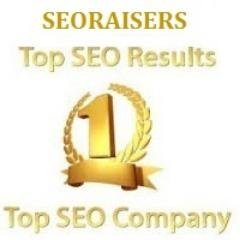 SEORAISERS - Top SEO Company in Chandigarh