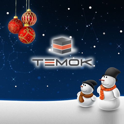 TEMOK IT Services