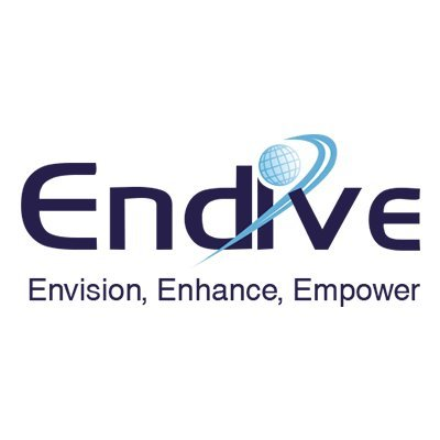 Endive Software Private Limited