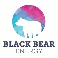 Black Bear Energy Inc.
