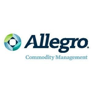 Allegro Development