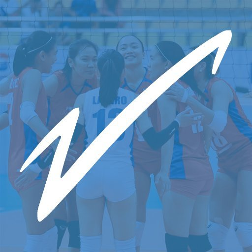 Volleyverse