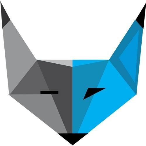 Blue Fox Technology