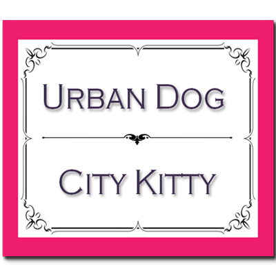 Urban Dog City Kitty