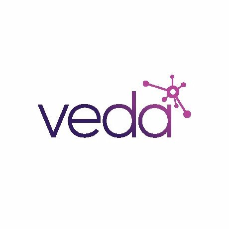 Veda Data Solutions