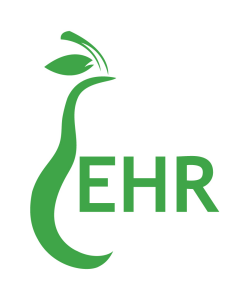 Practical EHR Solutions
