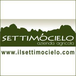 Settimocielo project