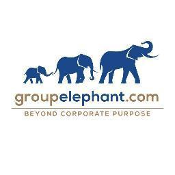 groupelephant