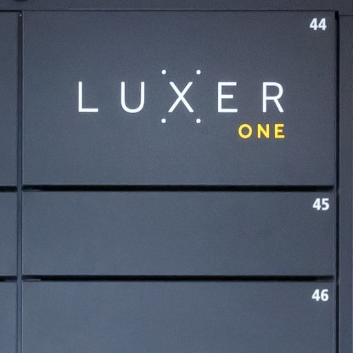 Luxer One