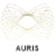 Auris Surgical Robotics
