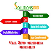 Solutions1313
