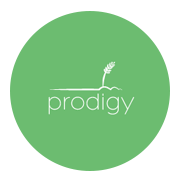 Prodigy Foods - DDGS Suppliers & Manufacturers