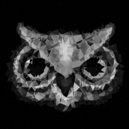 Owl Perception
