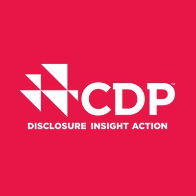 CDP Group, Ltd.