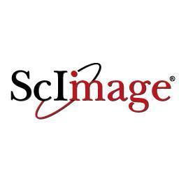 ScImage, Inc