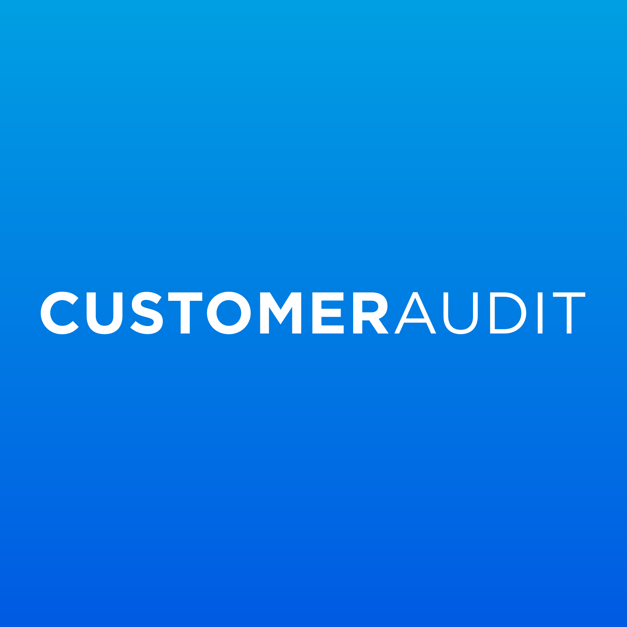 Customer Audit