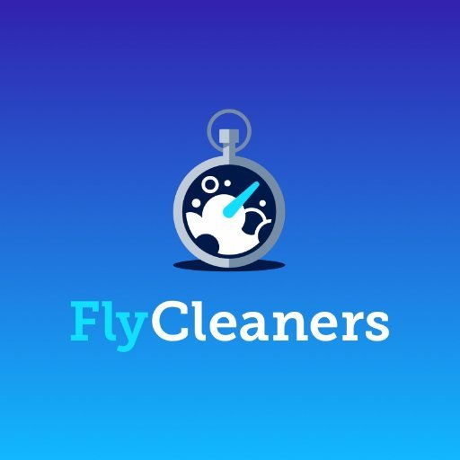 FlyCleaners