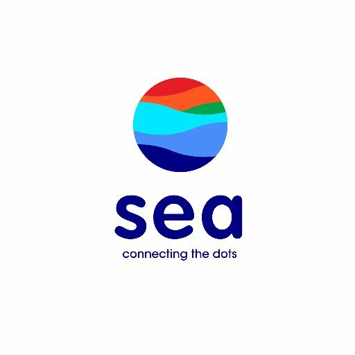 Sea Ltd (Garena)