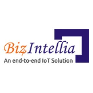 Biz4Intellia LLC - End-to-end IoT Solutions