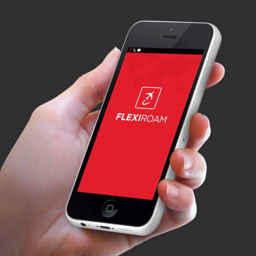 Flexiroam Team