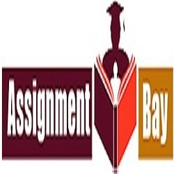 Assignmentbay