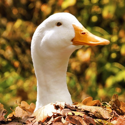 Aflac Duck
