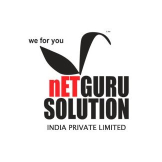 Netguru Solution India Pvt. Ltd.