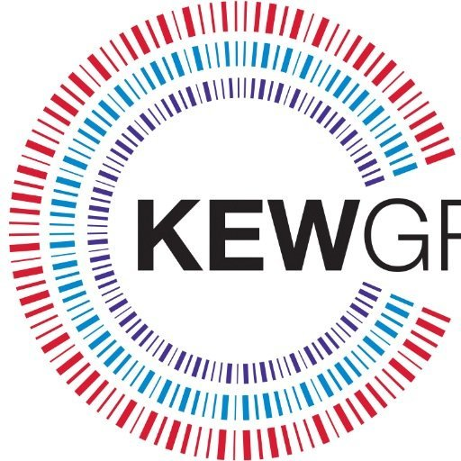 KEW Group