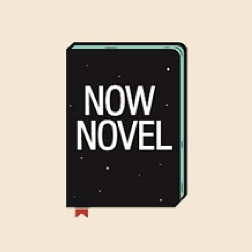 Bridget-Now Novel