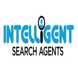 Intelligent Search Agents