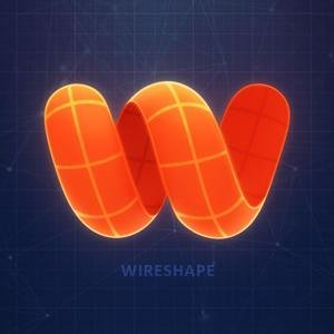 Wireshape