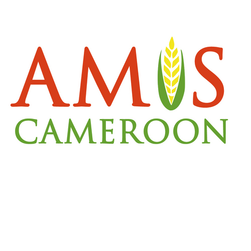 AMIS-Cameroon